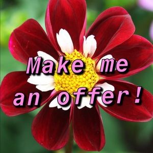 Other - I accept most offers!✨🌹